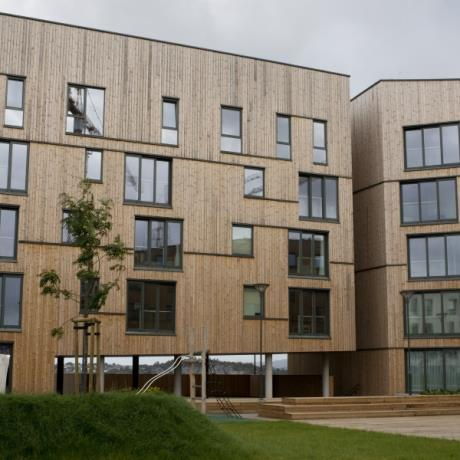 65 x 20mm C7J Thermory® Thermo-Treated Pine Timber Cladding