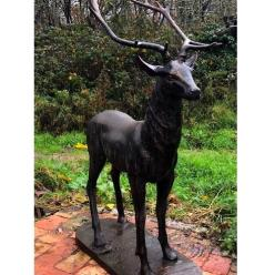 Bronze Majestic Stag Statue (Facing Left, Right or Forward)