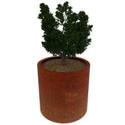 High Corten Steel Cylindro Planter