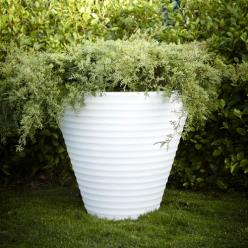 Neutral White Fiori Africa Luminous Planter