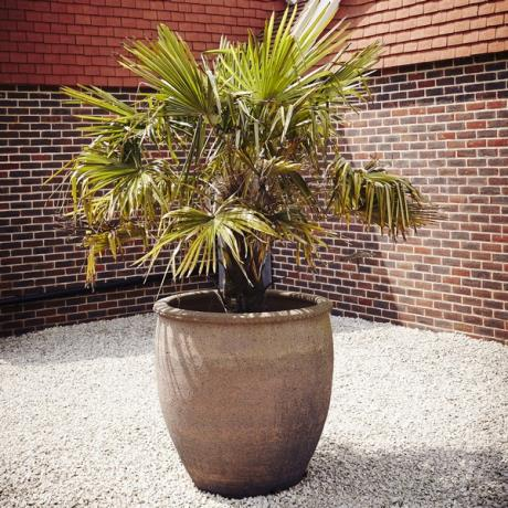 Old Ironstone Large Giant Round Garden Planter