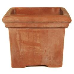 Terracini Baytree Square Planter