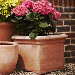 Terracino Baytree Square Planter