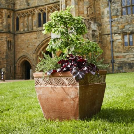 Terracini Square Duchess Cube Garden Planter In association with English Heritage