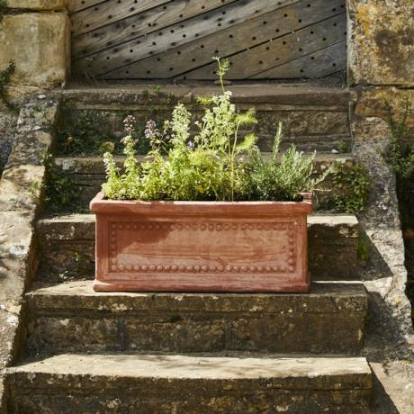 Terracini Patterned Rectangular Trough Garden Planter in association with English Heritage
