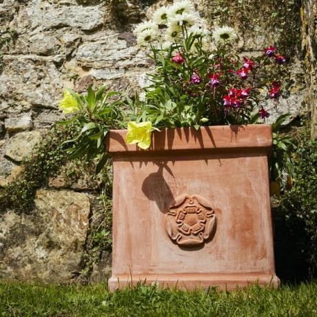 Terracini Square Rose Box Garden Planter In association with English Heritage