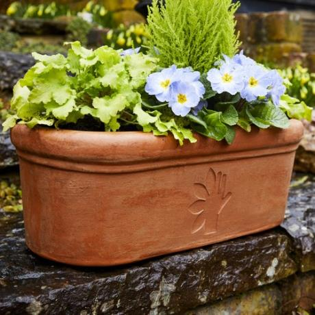 Terracini Oval Trough Thrive Charity Garden Planter - 10% of revenues are donated to the Thrive charity