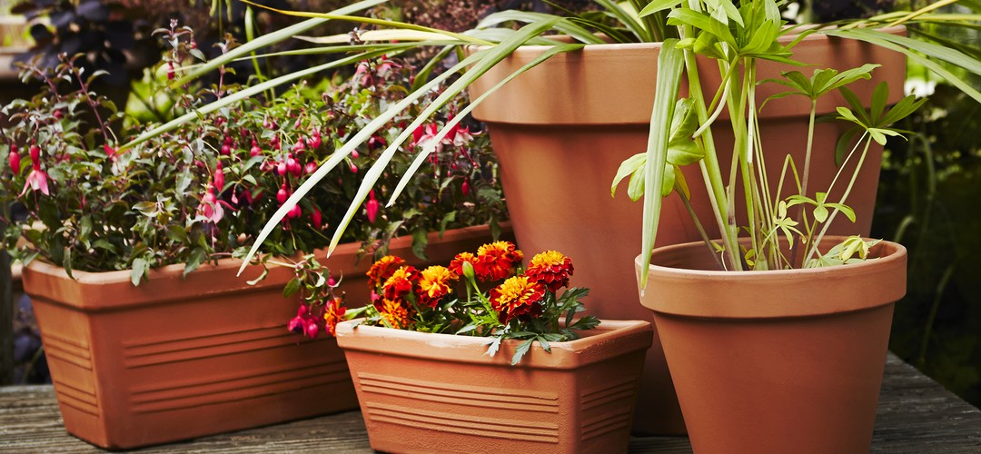 The Terracotta Garden Planter Range